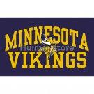 Minnesota Vikings Flag 90x150cm Polyester 3x5ft Digital Print Flag with 2 Metal Rings Vikings