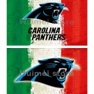 Carolina Panthers team FLAG green white red strip American flag