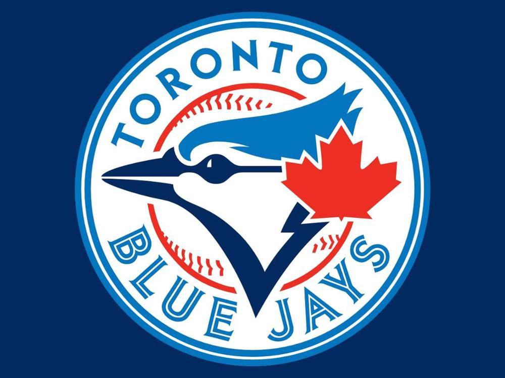 Toronto Blue Jays Flag 3ft x 5ft Polyester ML*B Toronto Blue Jays Banner