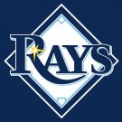 Tampa Bay Rays Flag 3'x5' Banner brass metal holes Rays Flag