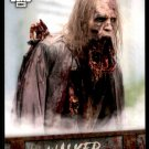 2018 Topps The Walking Dead Road to Alexandria Walker Hall of Fame #W-9