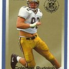 1993   Fleer    Prospects Insert    # 20   Coleman Rudolph   RC!