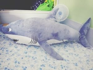 New 31 Anime Free Iwatobi Swim Club Rin Matsuoka Shark Big Plush Toy Doll Gift Stream new music from rin matsuoka for free on audiomack, including the latest songs, albums, mixtapes and playlists. new 31 anime free iwatobi swim club