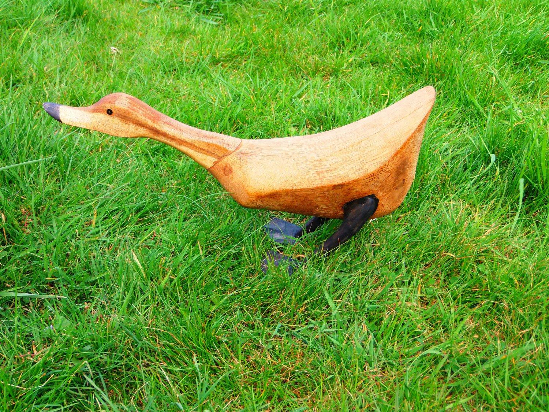 Wooden Duck feeding Large