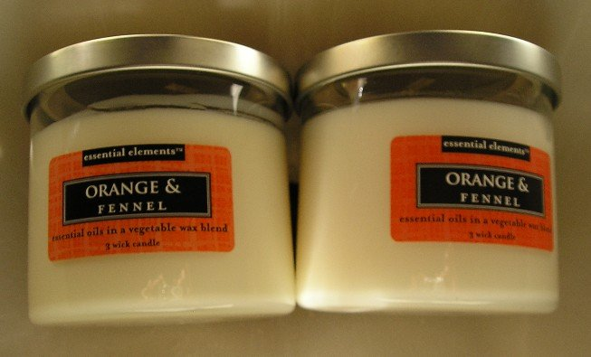 Lot of 2 Orange & Fennel 2 Wick Candles 16.25 oz EACH NEW