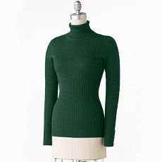 Daisy Fuentes Womens Sweater Long Sleeve Sz. Large in Green L Turtle Neck Ribbed Sweater NEW