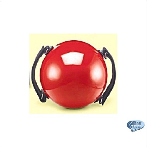 Body Toning Ball + Video + Instructions NEW 3.5 LB Workout