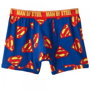 Superman Mens Boxers in a Cube Gift Sz. Small Boxer Shorts Underwear NEW $20.00