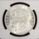 1921 TOP 100 VAM 41 B Pitted Reverse Choice MS 63 NGC Morgan Silver Dollar
