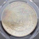 1878 7/8 TailFeather PCGS VAM 33A/Clash MS 64 Rainbow Toned Morgan Silver Dollar