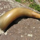 Curved Vintage drinking horn, Game of Thrones gift, Georgian traditional wine drinking horn chainles