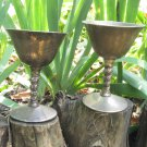 Dark Silver color Goblet Curved For martini set of 2, Martini midcentury lookind two cup set with cu