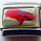 Red Lori parrot bird photo 9mm stainless steel italian charm bracelet link new