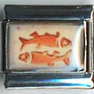 Pisces fish zodiac sign orange photo 9mm stainless steel italian charm link new