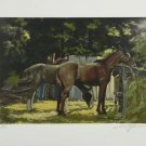 HARRY SCHAARE Horses Hand Signed Lithograph