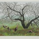 Allen C Friendman S/N Lithograph Turkey Time