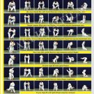 Posters JUDO. Yellow  belt  1 poster.The technique of judo.