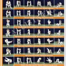 Posters JUDO. Orange  belt  1 poster.The technique of judo.