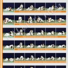 Posters JUDO. Orange  belt  1 poster.The technique of judo.KATAME-WAZA.