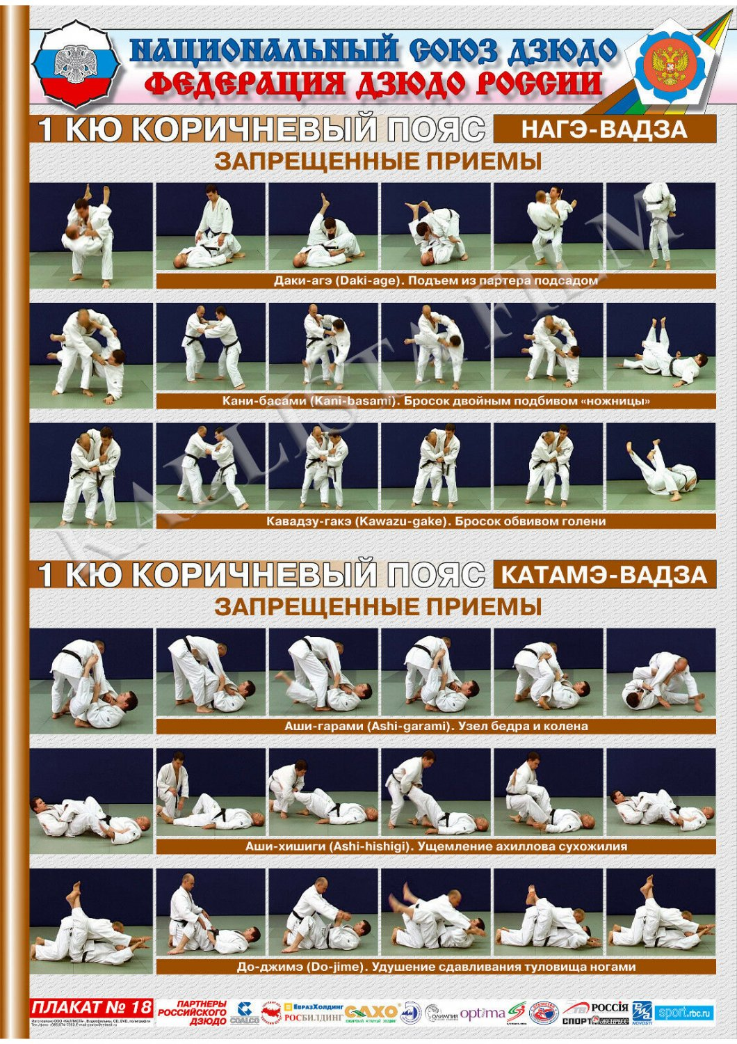 Posters JUDO. Brown   belt  1 poster.The technique of judo.NAGE WAZA 2.