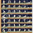 Posters JUDO. Brown   belt  1 poster.The technique of judo.