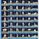 Posters JUDO. Blue   belt  1 poster.The technique of judo.