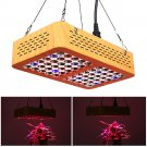 Full 300W led grow light indoor plant veg flower herb growth blooming 60led