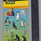 National Geographic KIDS stickers POLAR penguin polar bear