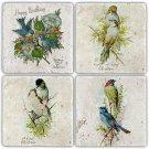 Birds - Stone Coasters - Set of 4 pcs. - 10 x 10 cm - 04