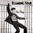 Elvis Presley - Flaming Star (2019 Silver Pressed Promo CD)*