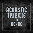 Guitar Tribute Players - Acoustic Tribute To Acdc (2020) CD