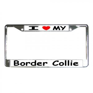 BORDER COLLIE DOG License Plate Frame Vehicle Heavy Duty Metal 12148768