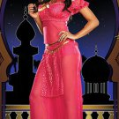 Woman Arabian Nights Chiffon Full Sleeve Fancy Dress Aladdin Lamp Costume Pink W8912