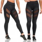 Plus Size Fitness Pants Mesh Patchwork High Waist Sports Leggings for Women