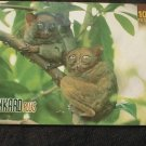 Philippines Phonecard PLDT 100 Peso Philippine Tarsiers  NO AIRTIME VALUE / USED
