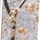 PHONECARD - SINGAPORE - $5 Beautiful Seasons Winter 05TSB1001