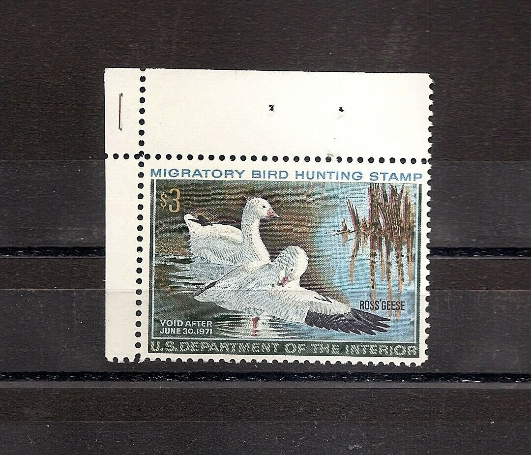 USA Duck Hunting Permit - 1970 - Ross' Geese  RW37 MNH