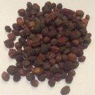 1 oz. Hawthorn Berries Whole (Crataegus sp.) Organic & Kosher Bulgaria