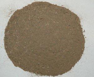 1 oz. Bacopa Monnieri Powder (Bacopa Monnieri) Wildharvested (India)