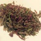 14 grams Indian Warrior Herb (Pedicularis Densiflora) Wildharvested USA