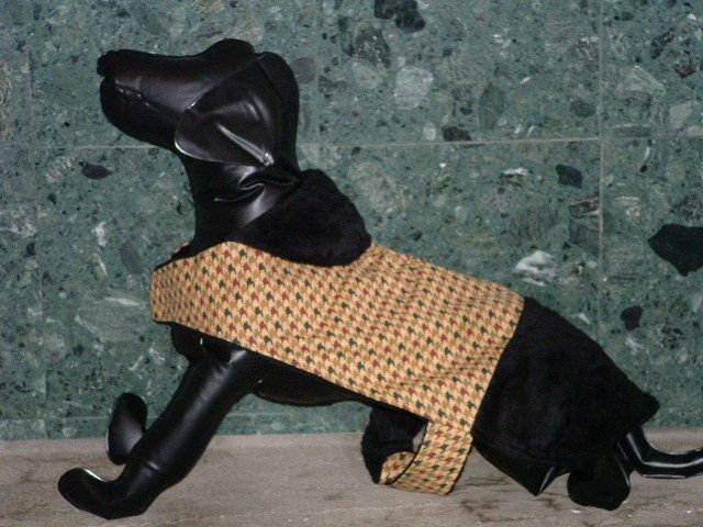 Khaki & Plaid Black Dog Jacket
