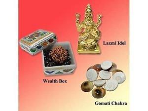 Wealth Prosperity Kit by Vedic Vaani