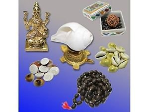 Abundance Kit For Wealth and Prosperity in Home and Office by Vedic Vaani