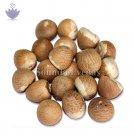 Pooja Supari Betel Nut