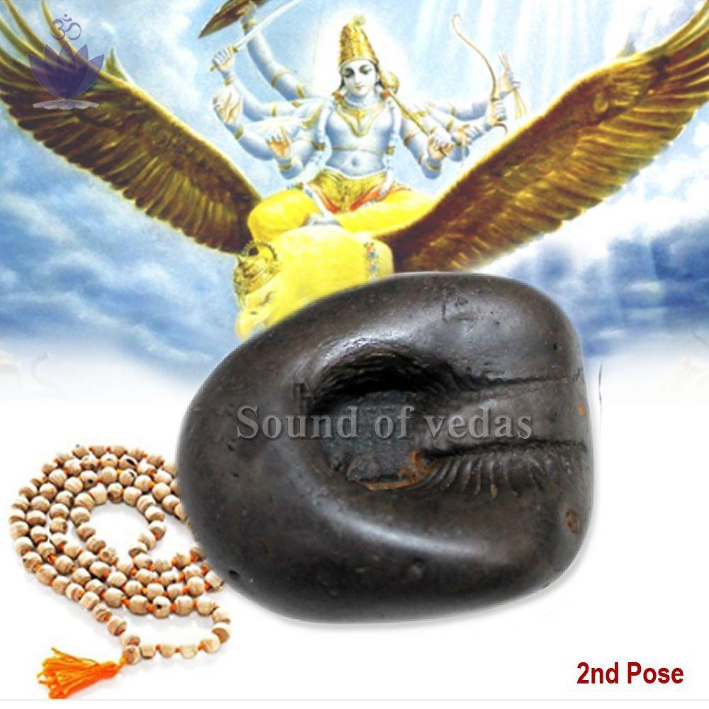 Divya Shalti Shaligram Shila