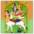 Gau Gayatri Japa Vidhan Buy Online in USA/UK/Europe