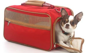 DOG CARRIER AIRLINE APPROVED chihuahua teacup yorkie PET CARRIER UP TO 8 LBS NEW