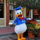 Custom made Donald Duck and Daisy Duck mascot costume for party