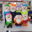 Custom made Seven Dwarfs mascot costume for Halloween party