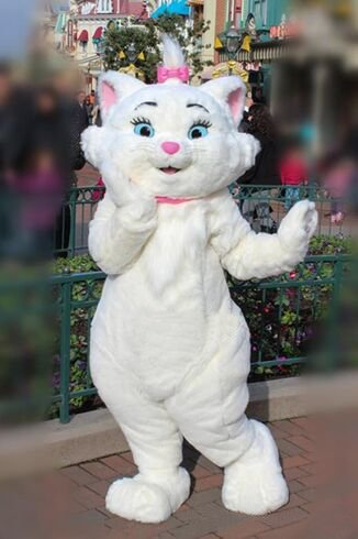 Custom made Marie the Cat  mascot costumes for adults